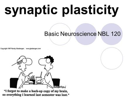 Synaptic plasticity Basic Neuroscience NBL 120. classical conditioning CS (neutral) - no response US - UR After pairing: CS - CR.