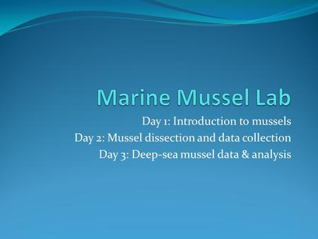 Day 1: Introduction to mussels Day 2: Mussel dissection and data collection Day 3: Deep-sea mussel data & analysis.