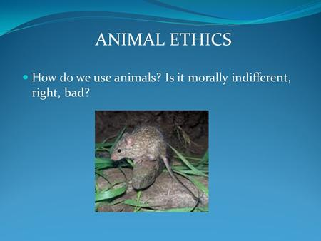 animal rights bad uses of animals Animal welfare is the well-being of animals animal welfare science uses various measures there are two issues in animal welfare and animal rights.