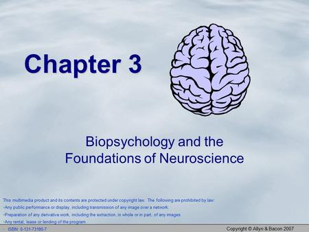 Copyright © Allyn & Bacon 2007 Chapter 3 Biopsychology and the Foundations of Neuroscience This multimedia product and its contents are protected under.