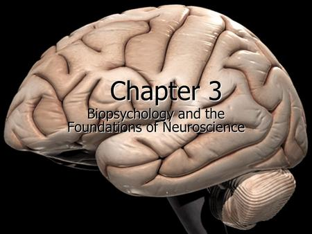 Copyright © Allyn & Bacon 2007 Chapter 3 Biopsychology and the Foundations of Neuroscience.