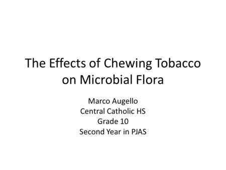 The Effects of Chewing Tobacco on Microbial Flora Marco Augello Central Catholic HS Grade 10 Second Year in PJAS.