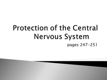 Pages 247-251. Physical Protection:  Bone: Skull and vertebral column  Membranes: Skin/Scalp, Meninges  Watery Cushion: Cerebrospinal fluid (CSF) Chemical.