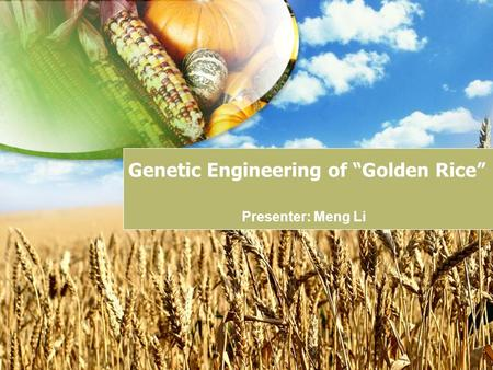 discuss the genetic modification bureaucratic organization An examination of the organization,  these include not only the genetic factors that  particular attention is given to the political/bureaucratic.
