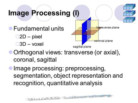 Image Processing (I) Fundamental units  2D – pixel  3D – voxel Orthogonal views: transverse (or axial), coronal, sagittal Image processing: preprocessing,