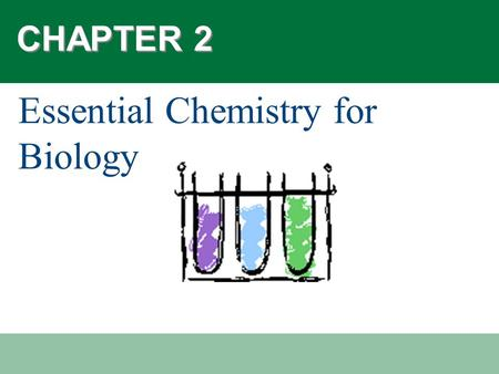 CHAPTER 2 Essential Chemistry for Biology. Did you know…?