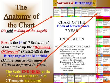"The Anatomy of the Chart Book of Revelation's Sorrows & Birthpangs First is the 1 st of 7 Seals, all of Which make up the ""Beginning Of Sorrows"" (Matt.24:8)"