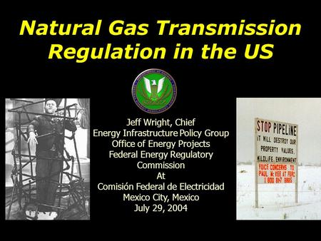 Natural Gas Transmission Regulation in the US Jeff Wright, Chief Energy Infrastructure Policy Group Office of Energy Projects Federal Energy Regulatory.