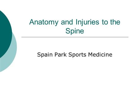 Anatomy and Injuries to the Spine Spain Park Sports Medicine.