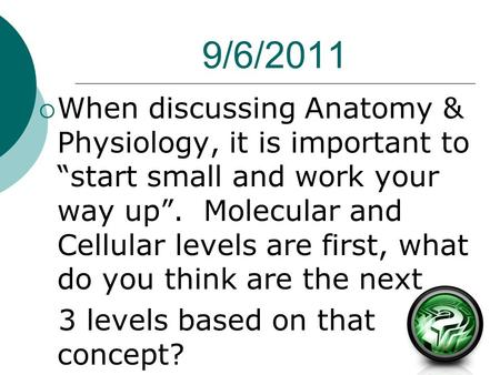 "9/6/2011  When discussing <strong>Anatomy</strong> & <strong>Physiology</strong>, it is important to ""start small <strong>and</strong> work your way up"". Molecular <strong>and</strong> Cellular levels are first, what do."
