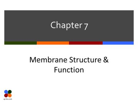 Chapter 7 Membrane Structure & Function. Slide 2 of 38 7.1 Plasma Membrane  Cell's barrier to the external world  Selectively permeable  Allows only.