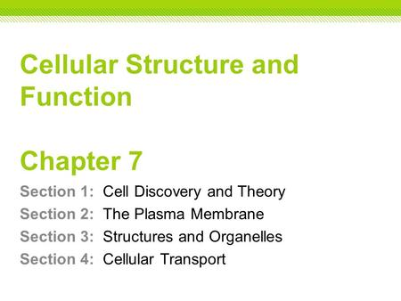 Cellular Structure and Function Chapter 7