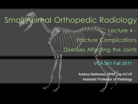 Small Animal Orthopedic Radiology Lecture 4 – Fracture Complications Diseases Affecting the Joints VCA 341 Fall 2011 Andrea Matthews, DVM, Dip ACVR Assistant.
