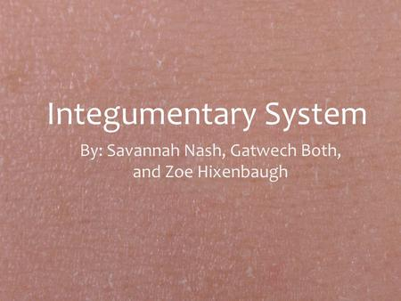 Integumentary System By: Savannah Nash, Gatwech Both, and Zoe Hixenbaugh.
