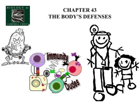 CHAPTER 43 THE BODY'S DEFENSES. Why does the body need a DEFENSE SYSTEM? Foreign invaders (non-self), cancerous cells (self) Nonspecific Defenses Against.