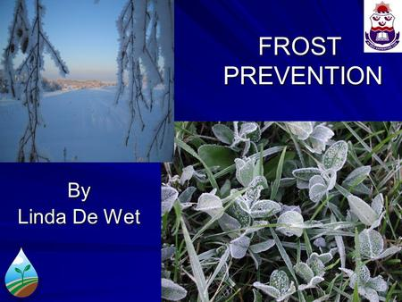 FROST PREVENTION By Linda De Wet. WHAT IS FROST? Frost is defined in the Glossary of Meteorology as the condition that exists when the temperature (Ta)