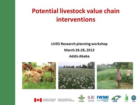 Potential livestock value chain interventions LIVES Research planning workshop March 26-28, 2013 Addis Ababa.
