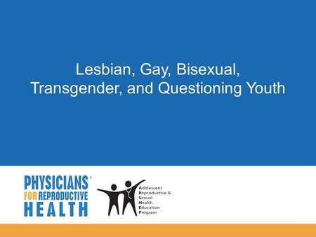 Gay, Lesbian and Bisexual Adolescents