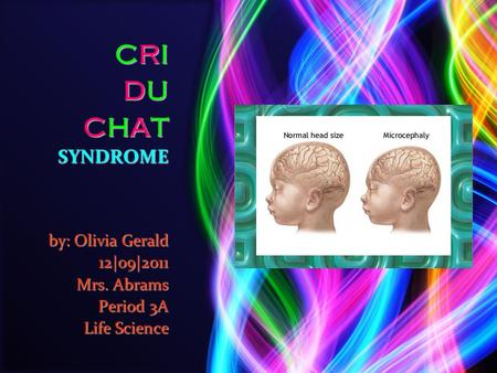 CRI DU CHAT SYNDROME by: Olivia Gerald 12|o9|2011 Mrs. Abrams