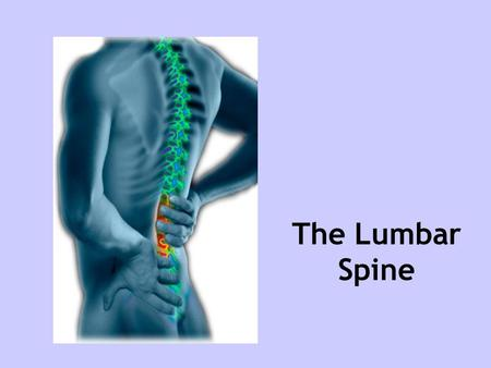 The Lumbar Spine. Introduction Prevalance Diagnosis of lumbar spine Soft tissue/repetitive strain injuries Facet joint injuries OA Disc problems Summary.
