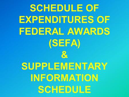 SCHEDULE OF EXPENDITURES OF FEDERAL AWARDS (SEFA) & SUPPLEMENTARY INFORMATION SCHEDULE.