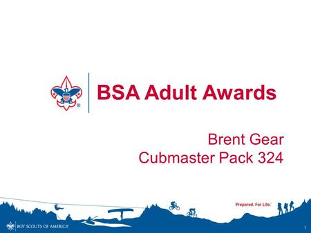 BSA Adult Awards Brent Gear Cubmaster Pack 324.