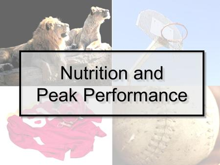 "Nutrition and Peak Performance. What to do when nutrition is your missing link. "" I train really hard and I'm not seeing results."" ""What should I eat."