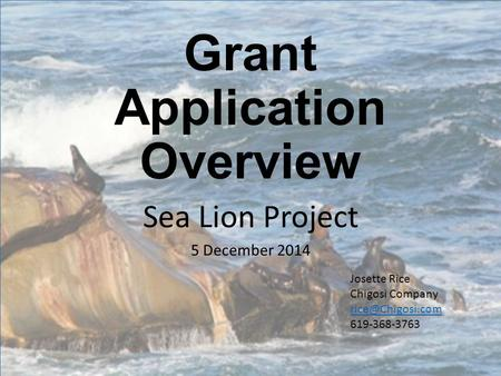Grant Application Overview Sea Lion Project 5 December 2014 Josette Rice Chigosi Company 619-368-3763.