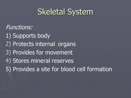 Skeletal System Functions: 1) Supports body 2) 2) Protects internal organs 3) 3) Provides for movement 4) 4) Stores mineral reserves 5) Provides a site.