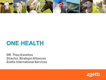 1 ONE HEALTH DR. Theo Kanellos Director, Strategic Alliances Zoetis International Services.