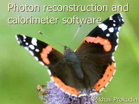 Photon reconstruction and calorimeter software Mikhail Prokudin.