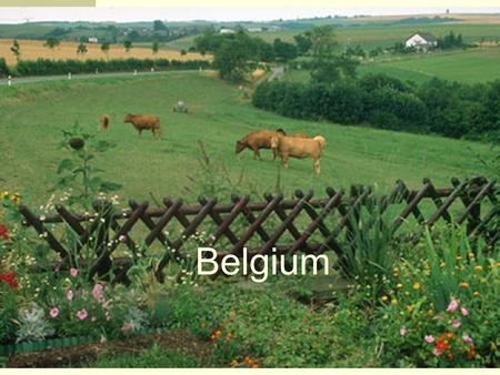 Belgium. Location Northwestern Europe, the Netherlands is to the north, Germany and Luxembourg to the east, France to the south, and the North Sea to.