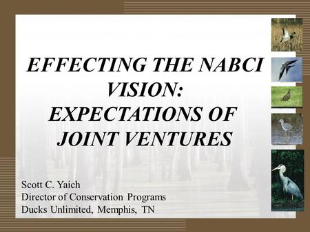 EFFECTING THE NABCI VISION: EXPECTATIONS OF JOINT VENTURES Scott C. Yaich Director of Conservation Programs Ducks Unlimited, Memphis, TN.