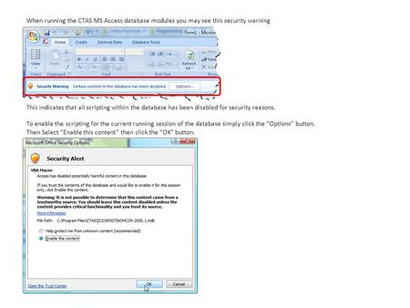 When running the CTAS MS Access database modules you may see this security warning This indicates that all scripting within the database has been disabled.
