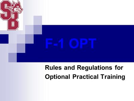 Rules and Regulations for Optional Practical Training