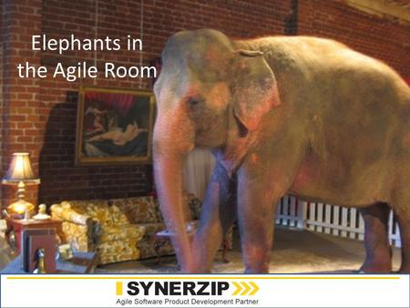 Www.synerzip.com Elephants in the Agile Room. Reflections on 10 Years of Agility Todd Little Sr. Development Manager Landmark Graphics.