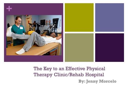 + The Key to an Effective Physical Therapy Clinic/Rehab Hospital By: Jenny Morcelo.