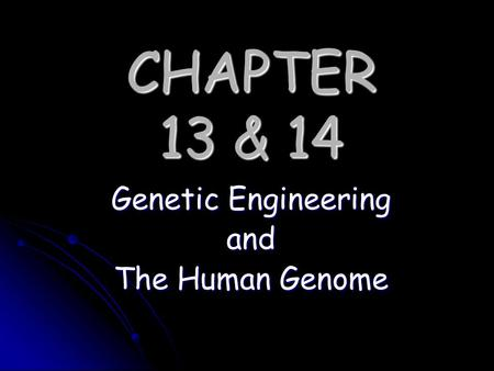 CHAPTER 13 & 14 Genetic Engineering and The Human Genome.