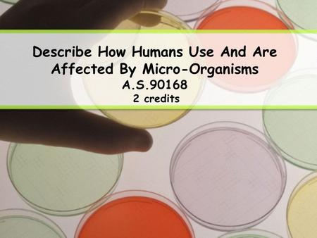 Describe How Humans Use <strong>And</strong> Are Affected By Micro-Organisms A.S.90168 2 credits.