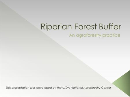 Riparian Forest Buffer An agroforestry practice This presentation was developed by the USDA National Agroforestry Center.