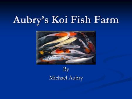 Aubry's Koi Fish Farm By Michael Aubry. Business Overview Aubry's Koi Fish Farm is a high quality reseller and purveyor of premium Koi and other exotic.