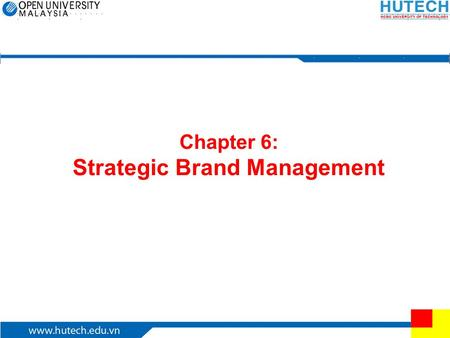 Chapter 6: Strategic Brand Management