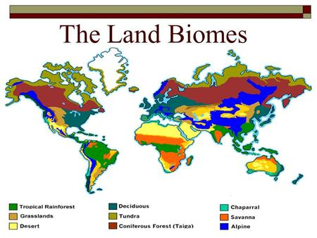 The Land Biomes. Introduction  Today, we will take a tour of some of the terrestrial biomes around the Earth.  While on the tour, you will discover.