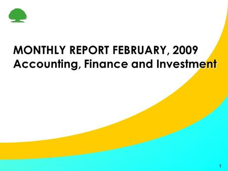 1 MONTHLY REPORT FEBRUARY, 2009 Accounting, Finance and Investment.