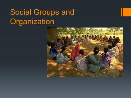 Social Groups and Organization. Social Group(s)  ***A cluster of people beyond the domestic unit who are usually related on grounds other than kinship.