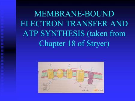FREE ENERGY – MOST USEFUL THERMODYNAMIC CONCEPT IN BIOCHEMISTRY