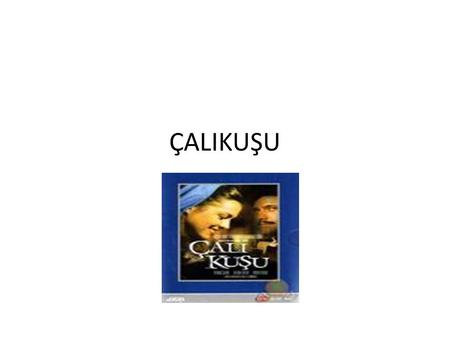 ÇALIKUŞU. This novel portrays the struggle of a woman in a male-dominated society. Feride, heroine of the book, tries to lead her life working as a teacher.