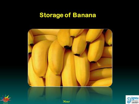 Next Storage of Banana. Introduction Storage in case of banana refers to keeping banana hands in safe condition for sufficiently long duration of time.