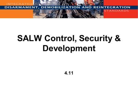 SALW Control, Security & Development 4.11. Overview Introduction DDR and SALW Control International agreements SALW Control measures Guiding principles.