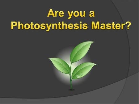 Photosynthesis Master?